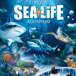 Sealife-aquarium
